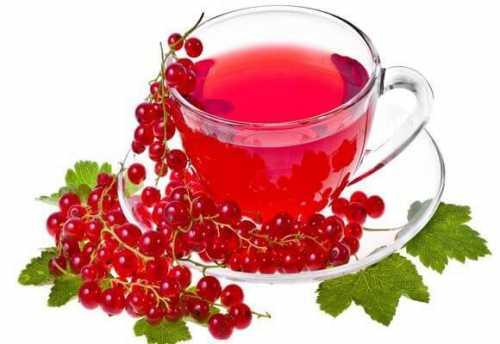 напиток из мяты и имбиря, который поможет активировать метаболизм