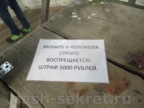 штраф за нарушение миграционного режима россии